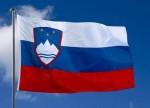 Slovenia eyes pay-DTT