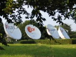 ZDF JV plans international channels