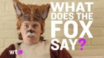 What-Does-Fox-Say-Ylvis