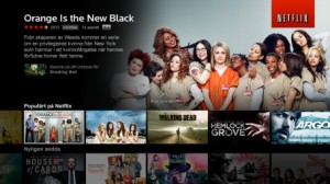 Netflix Com Hem