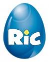 RiC Logo NEU